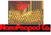 شرکت نانو پی پاد (پیشرو در علوم و فناوری های نوین) لوگو